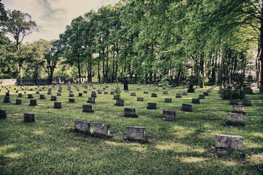 7036-military-cemetery-1