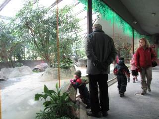 Зоопарк в Праге
