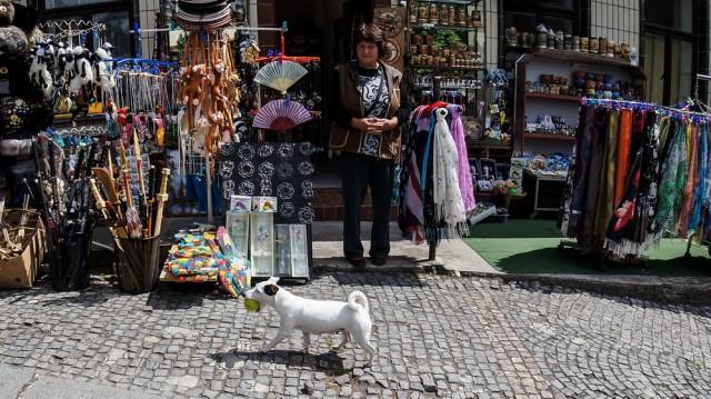 Собака идет на экскурсию в Карлштейн