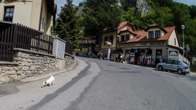 Дорога в Карлштейн и собака с игрушкой.