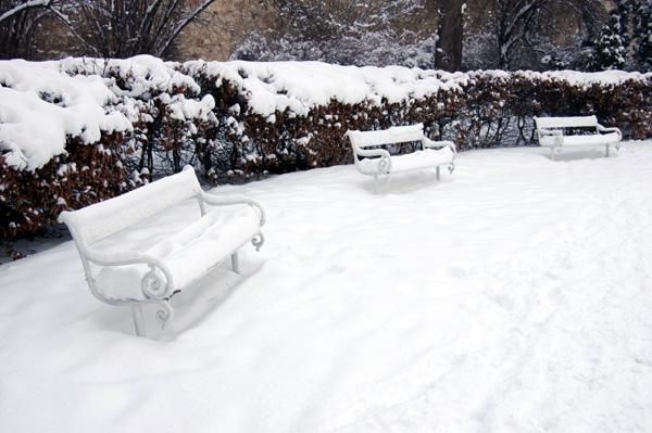 Петршин зимой