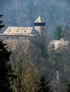 Замок Летице-над-Орлицей