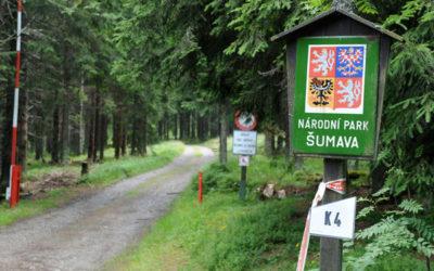 Шумава: уникальный заповедник Чехии